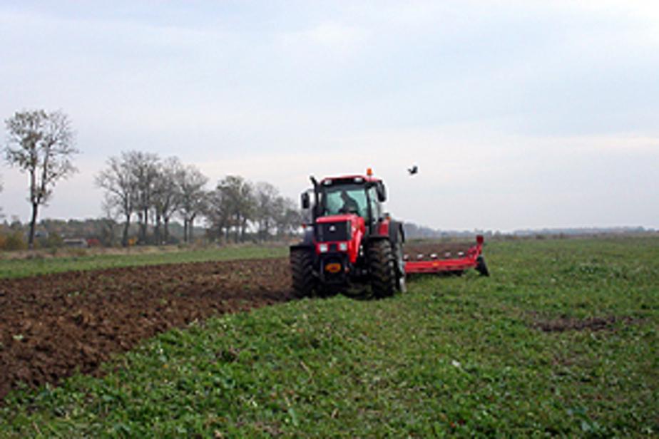 В 2011 году распахано 18-5 тыс- га заброшенных сельскохозяйственных земель - Новости Калининграда