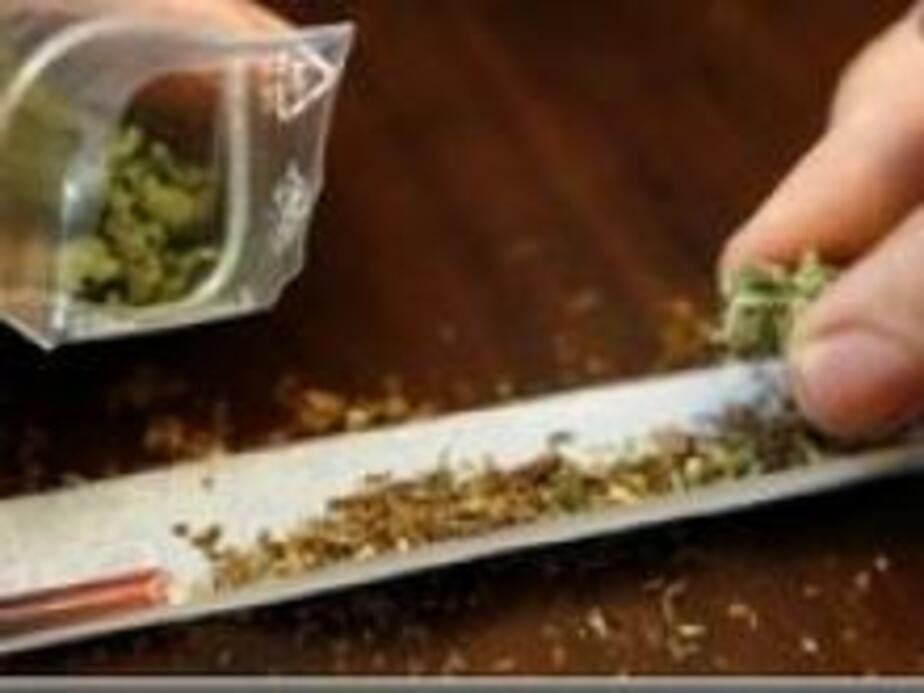 Калининградец задержан за сбыт марихуаны - Новости Калининграда