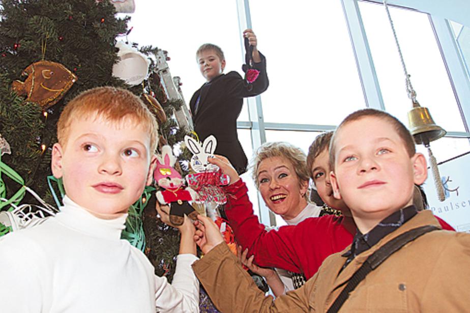 Юные читатели «СК» подарили калининградцам елку с ароматом ванили и корицы - Новости Калининграда