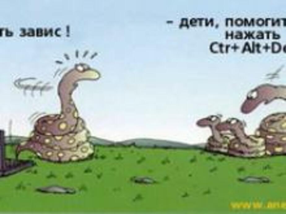 Вирус с -ВКонтакте-РУ- уничтожает файлы- Как защититься- - Новости Калининграда