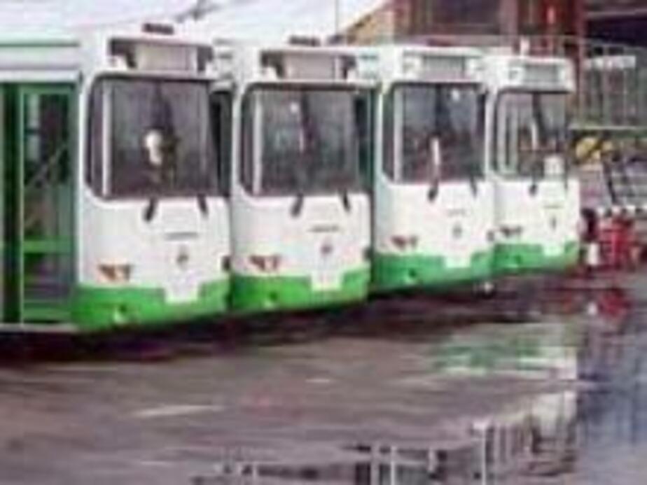 Благодаря конкурсу перевозчики на время снизят цены - Новости Калининграда