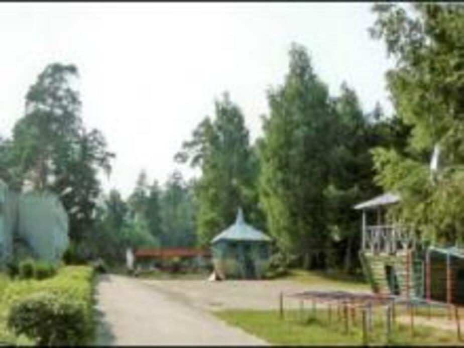 В летнем лагере не оказалось молниезащиты - Новости Калининграда