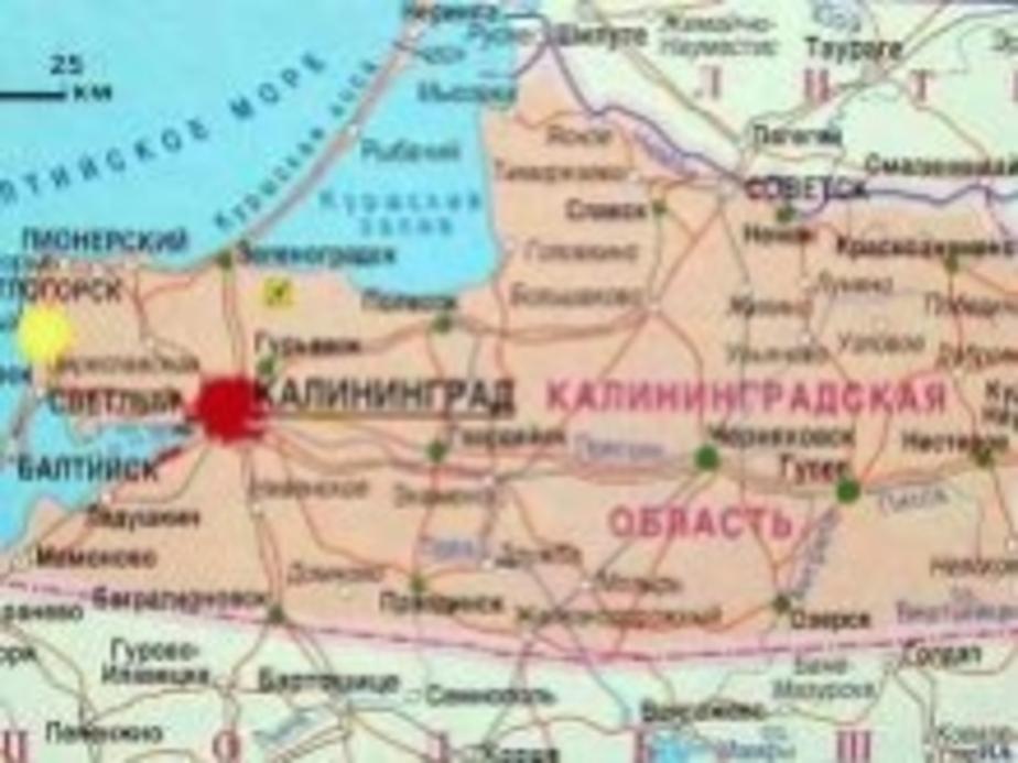 Документы о проведении референдума -Антивегас- признаны законными - Новости Калининграда