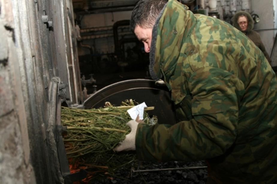 В 2010 г- наркополицейские изъяли 86 кг наркотиков - Новости Калининграда