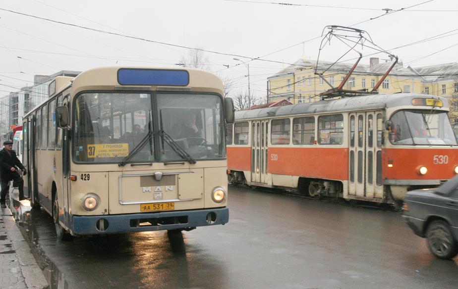 ГИБДД- В Калининграде слишком много общественного транспорта - Новости Калининграда