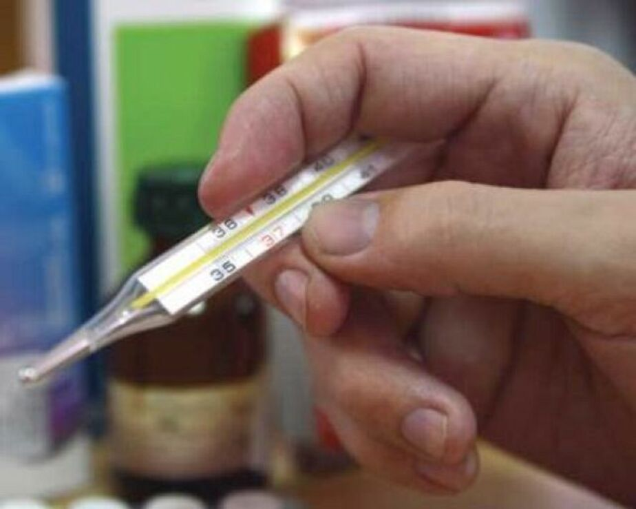 Эпидемия гриппа на Северо-Западе ожидается в конце февраля - Новости Калининграда