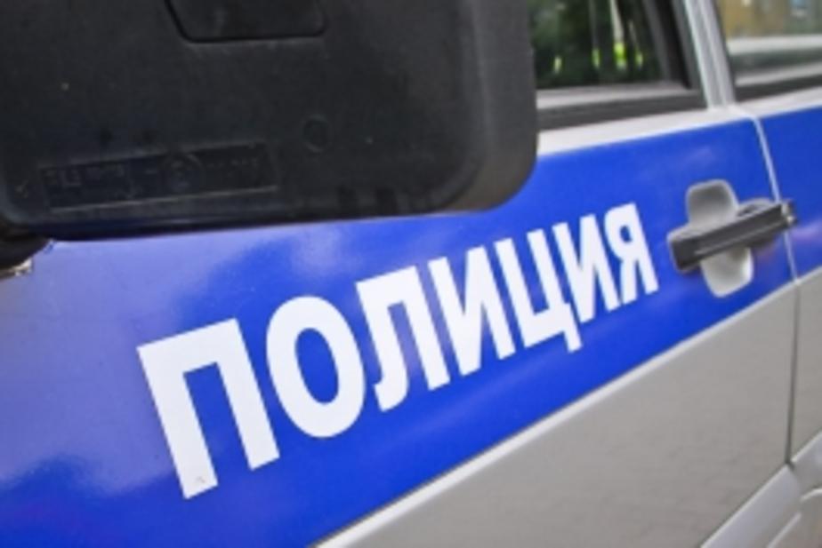 Калининградская полиция опровергла слухи о появлении маньяка - Новости Калининграда