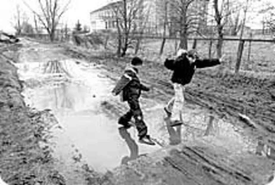 Путь к знаниям ведет через болото - Новости Калининграда