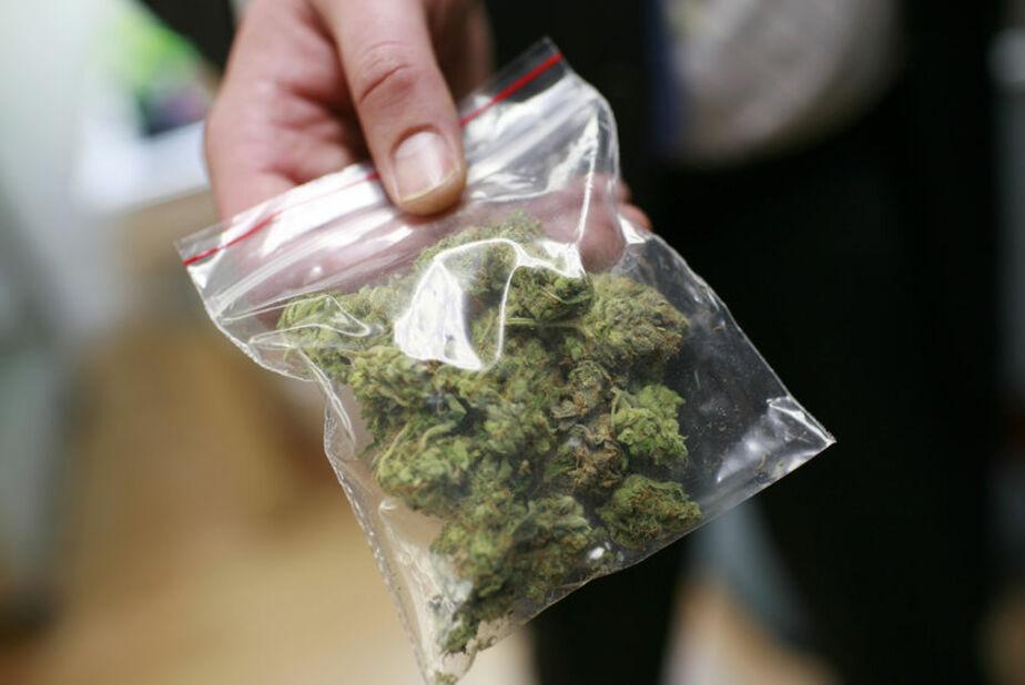 Калининградец вез из Польши 650 гр марихуаны- чтобы отметить день рождения Боба Марли в клубе - Новости Калининграда