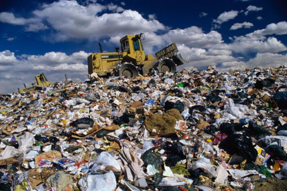 В Советске пенсионера оштрафовали за выброшенный мусор - Новости Калининграда