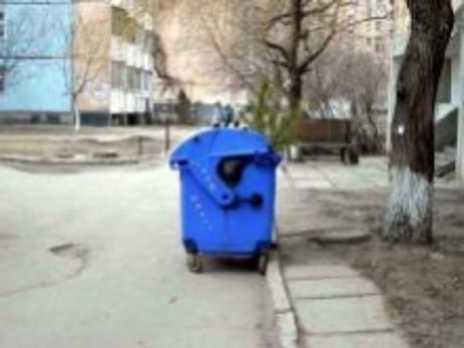 Придомовые территории в Балтрайоне завалены мусором - Новости Калининграда