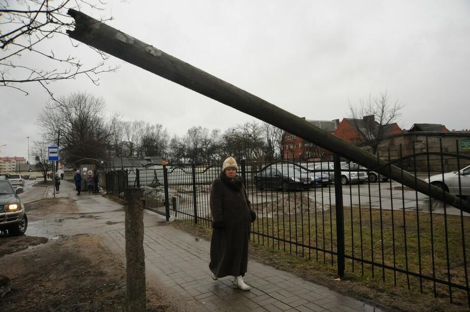 В Калининграде ожидается ураганный ветер до 30 м-с - Новости Калининграда