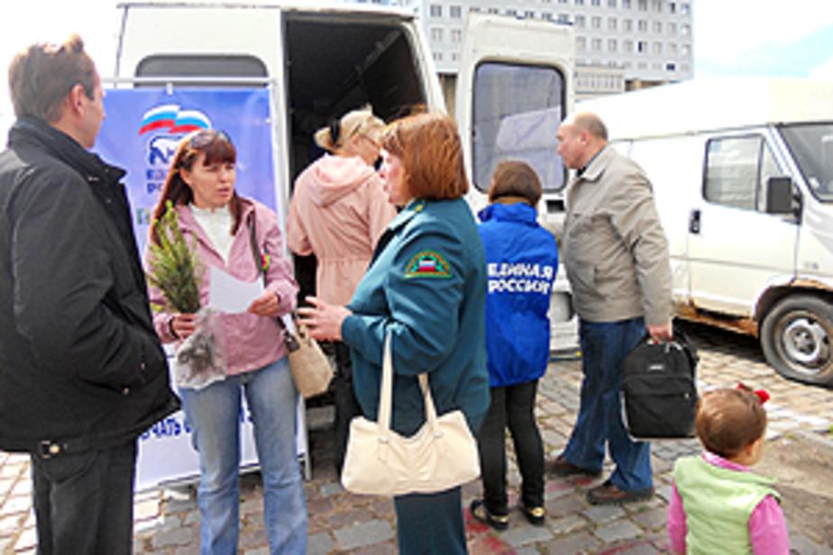 1 октября в регионе посадят миллион деревьев -список мест для посадок- - Новости Калининграда