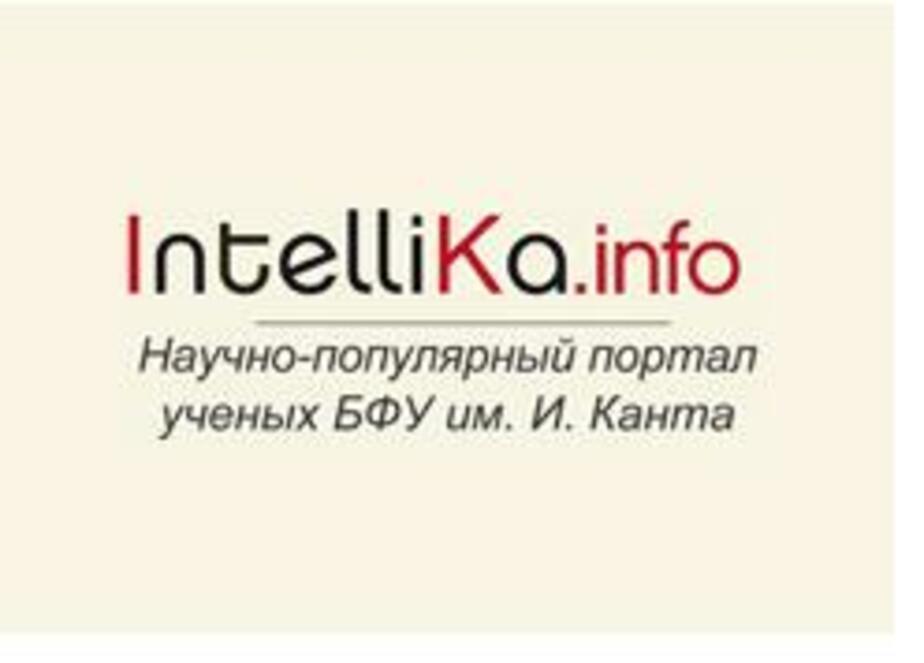 IntelliKa-info - новый информационный ресурс о науке - Новости Калининграда