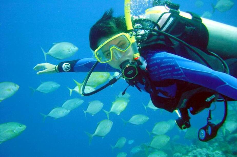 В области будут развивать дайвинг- яхтинг- экологический и спортивный туризм - Новости Калининграда