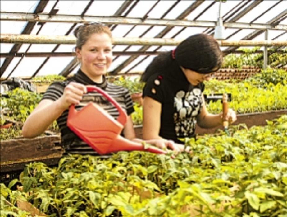 Стоимость реконструкции калининградского ботанического сада оценили в 2 млн евро - Новости Калининграда