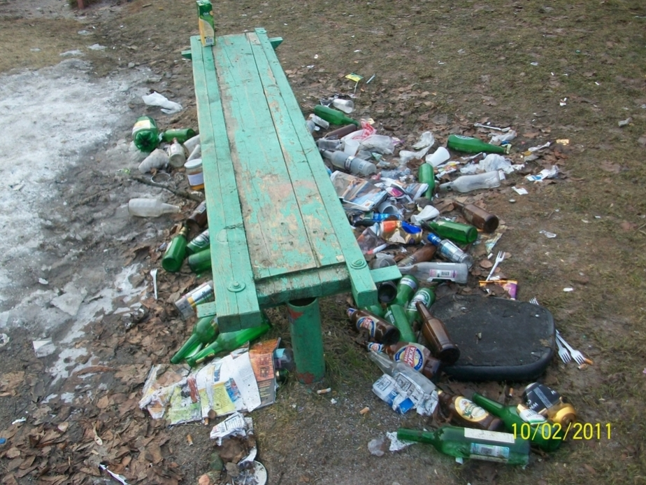 Жильцы дома с Зоологической через суд требуют от УК убирать двор - Новости Калининграда