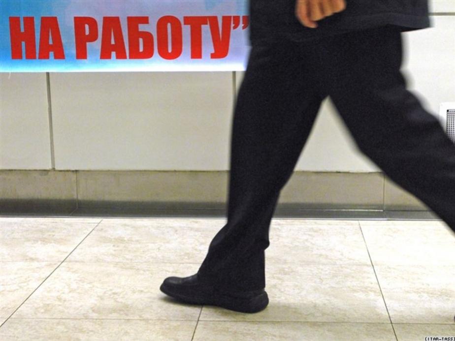 Уровень безработицы в регионе снизился до докризисного уровня - Новости Калининграда