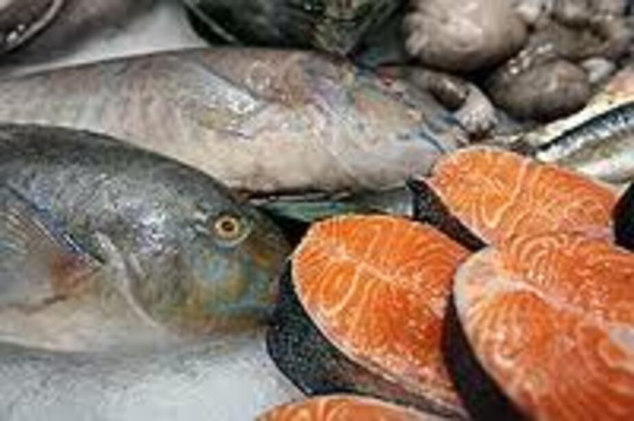 Двум калининградцам грозит срок за производство опасной рыбной продукции - Новости Калининграда