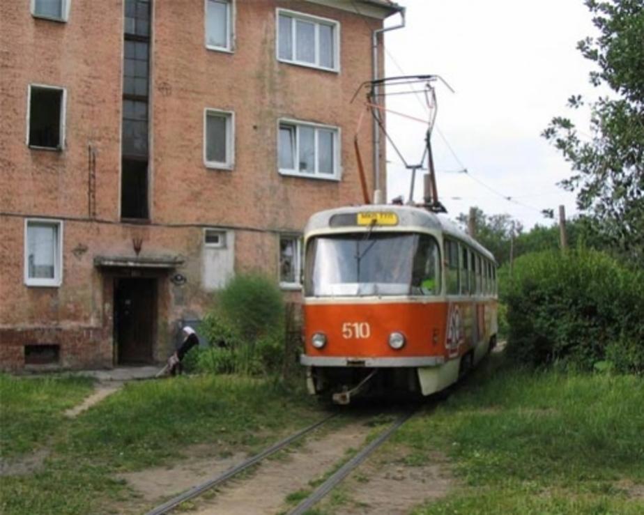 В Калининграде вернут один трамвай и уберут другой - Новости Калининграда