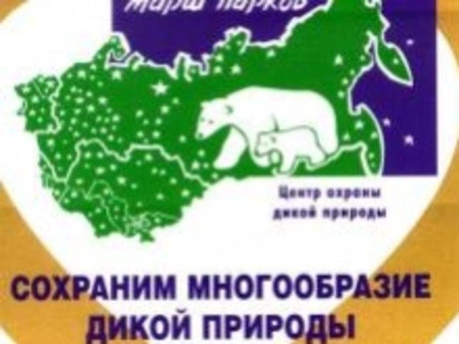 На Куршской косе состоится акция -Четыре стихии- - Новости Калининграда