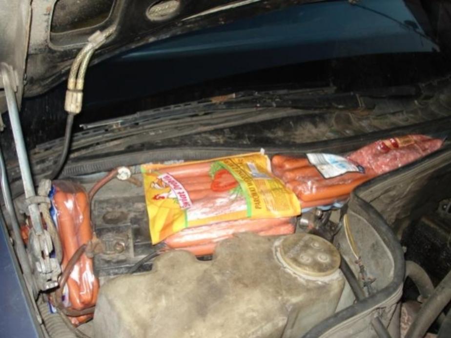 Из Польши в капоте машины пытались провезти 85 кг сосисок - Новости Калининграда