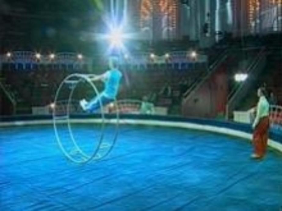 Завтра торжественно откроется калининградский цирк - Новости Калининграда