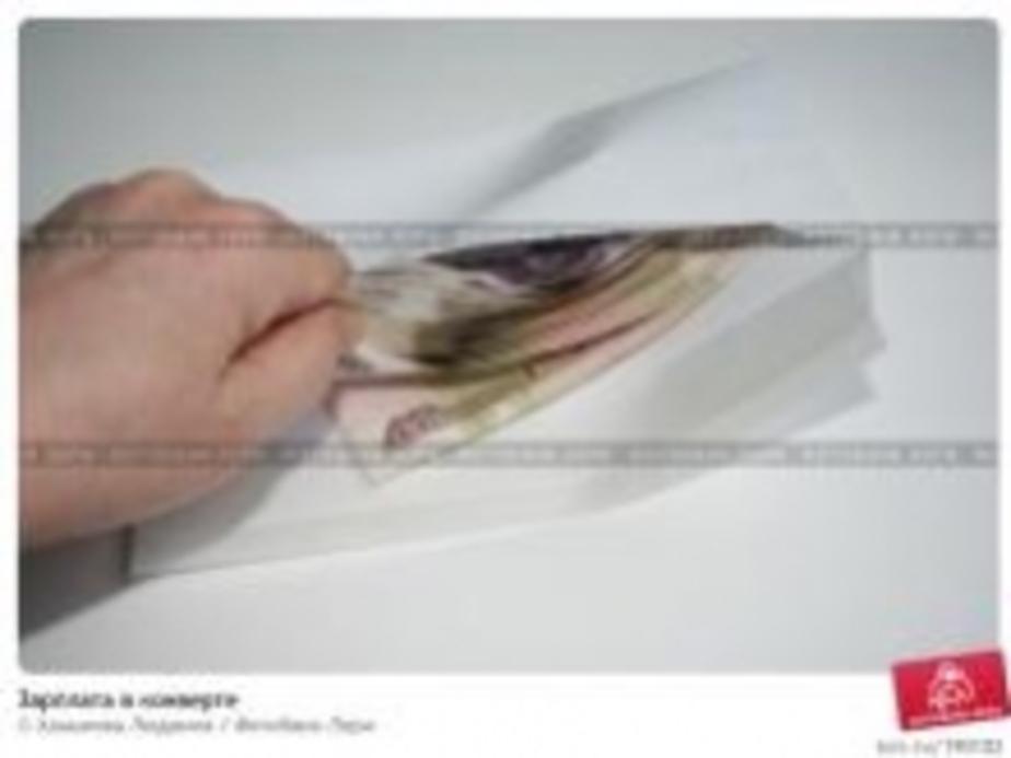 1114 работодателей перешли на белые зарплаты - Новости Калининграда