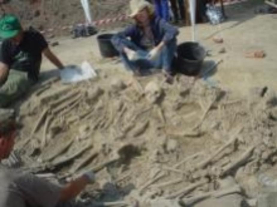 Раскопки на месте -Европы-центра- были согласованы с 35 организациями - Новости Калининграда