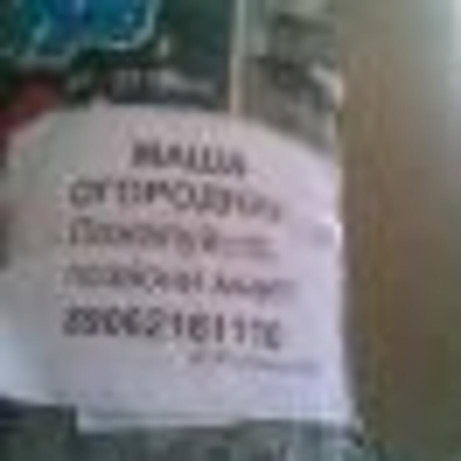 Игорь ищет Машу - Новости Калининграда
