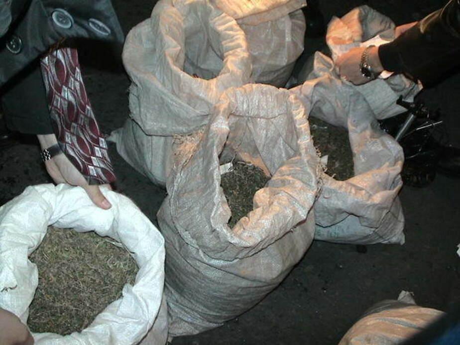 В Нестеровском районе в сарае у сторожа нашли 72 гр марихуаны - Новости Калининграда
