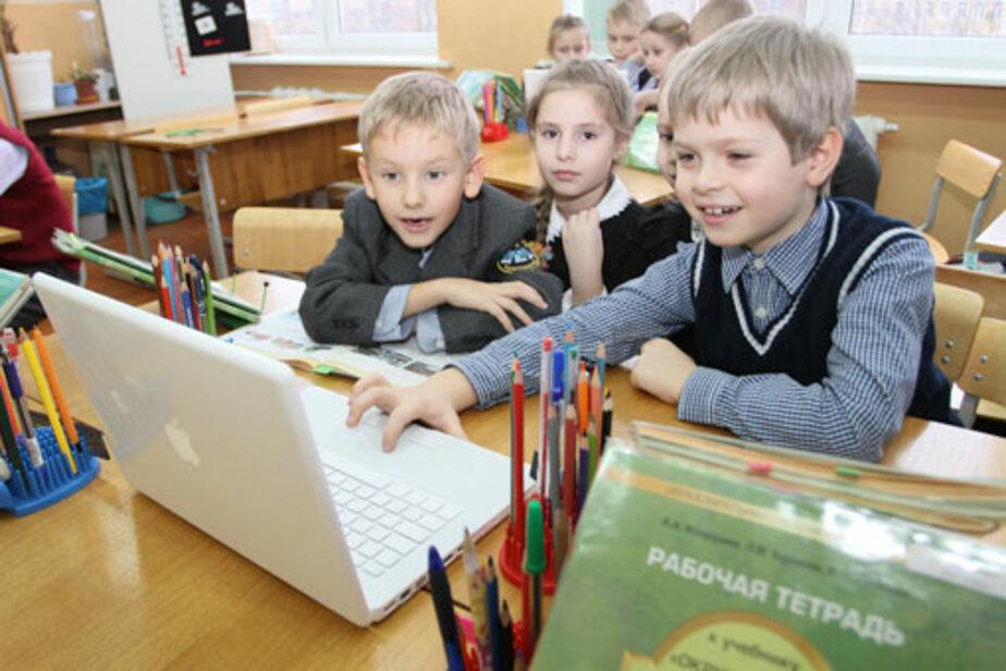 Где будет учиться ваш ребенок - Новости Калининграда