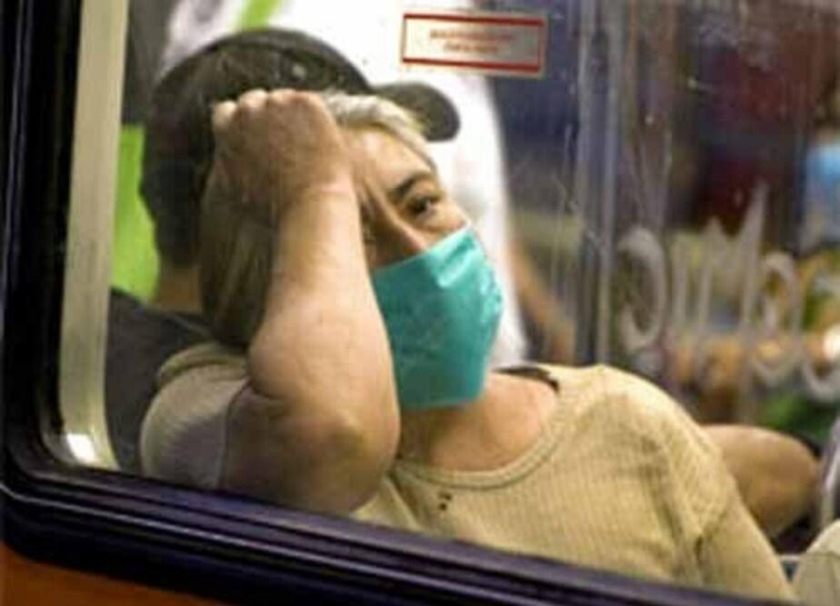 В Поморском воеводстве Польши зафиксировано 5 случаев свиного гриппа - Новости Калининграда