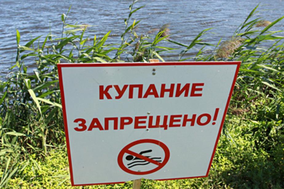 В калининградских озерах запретили купаться - Новости Калининграда