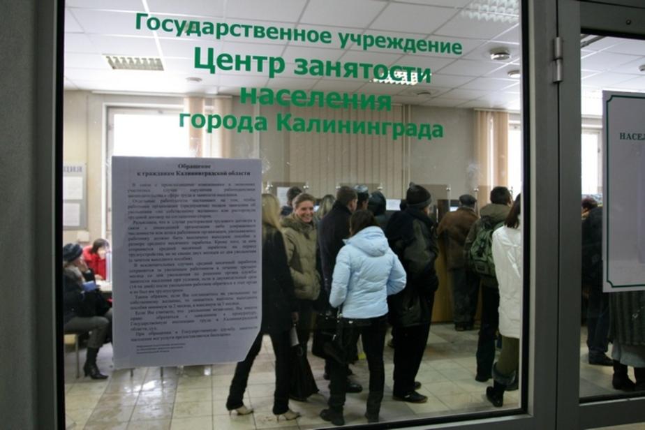 На что имеет право безработный - Новости Калининграда