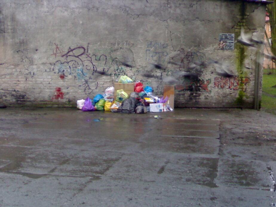 Исчезли контейнеры под мусор - Новости Калининграда