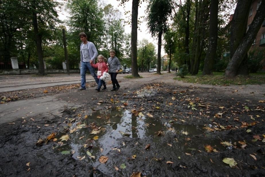Книга жалоб: На проспекте Победы нет тротуаров - Новости Калининграда