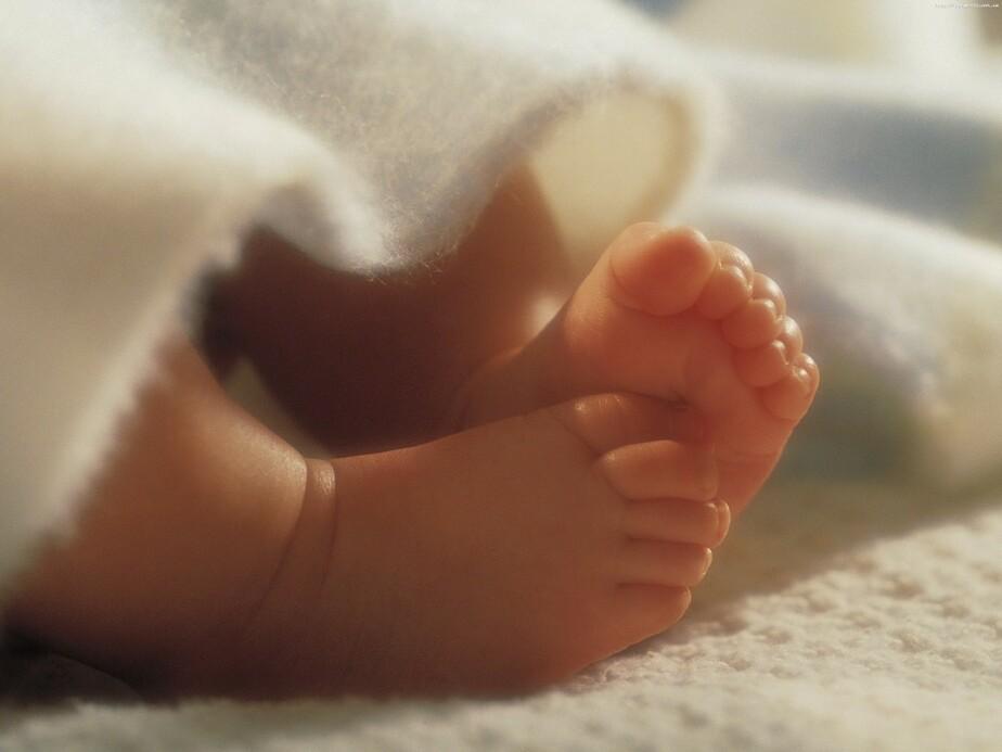Калининградки стали реже делать аборты - Новости Калининграда