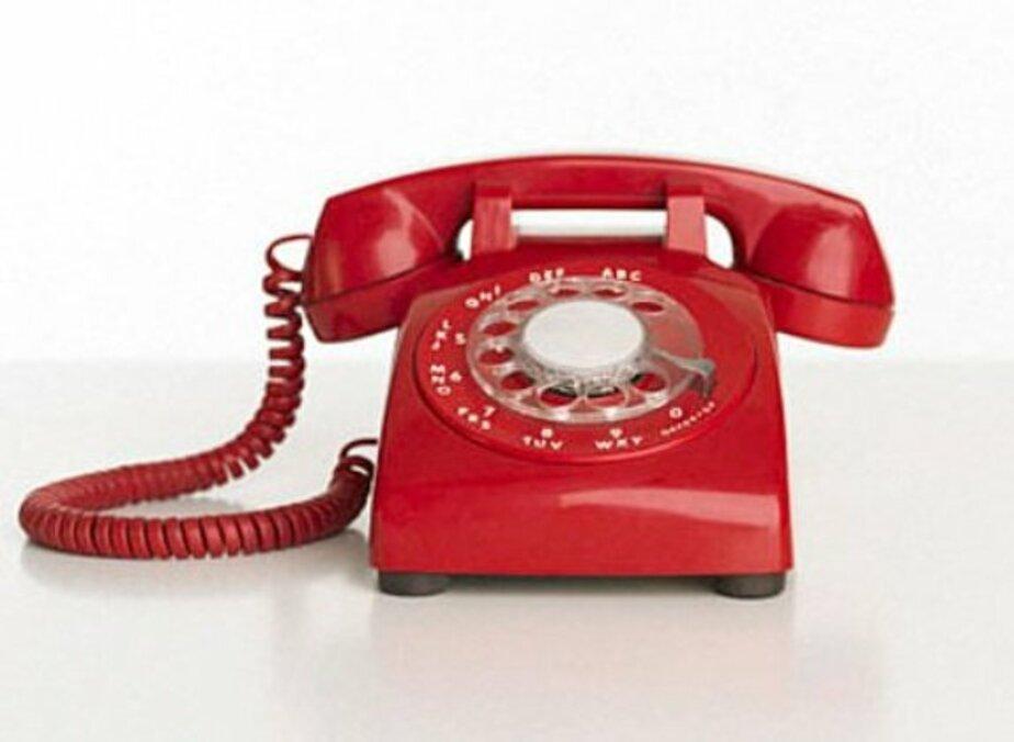 Во вторник в администрации Центрального района не будут работать телефоны - Новости Калининграда