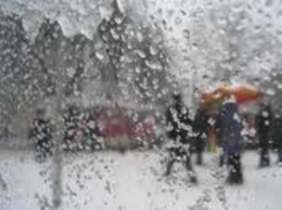 МЧС- В Калининградской области ожидается метель и усиление ветра - Новости Калининграда