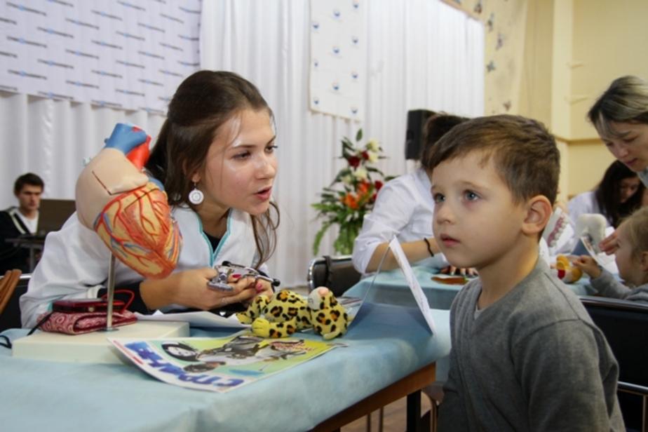 Все игрушки теперь здоровы! - Новости Калининграда