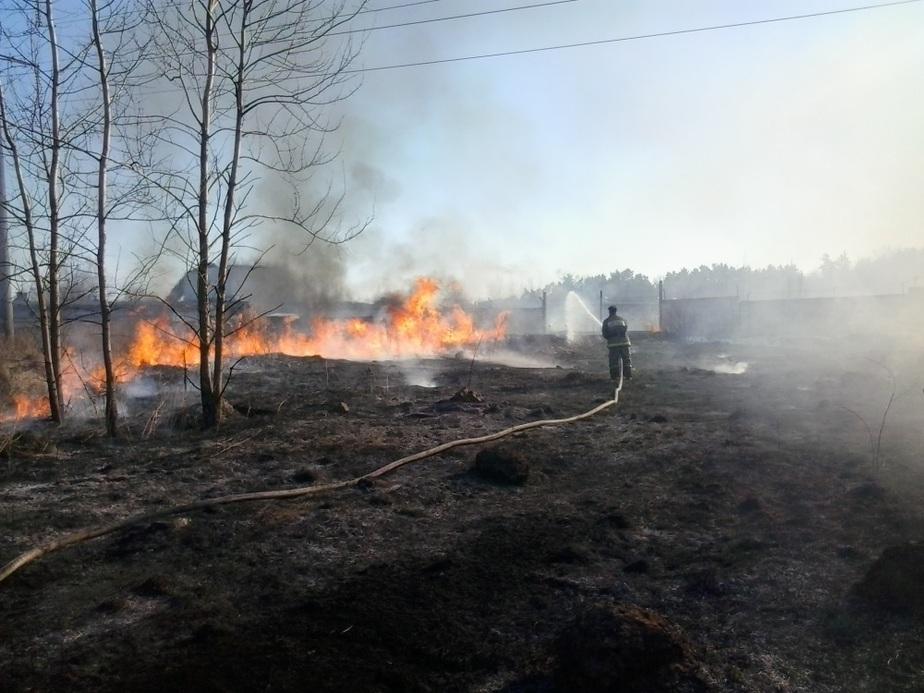 В Советске огонь с горящего поля едва не перекинулся на жилые дома - Новости Калининграда