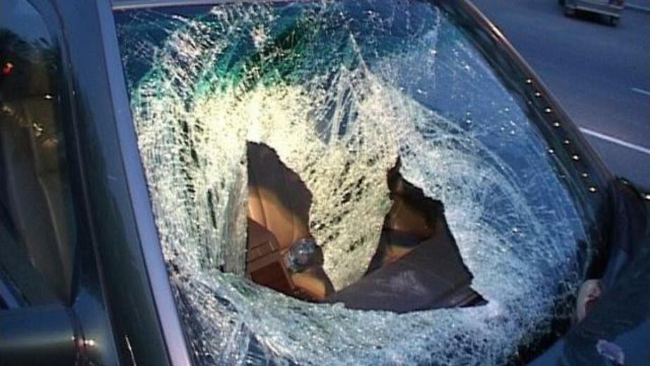 Водитель ВАЗа сбил пьяного пешехода- вывалившегося на дорогу из-за дерева