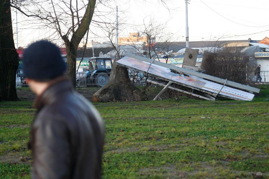 Штормовой ветер в Калининграде усилится к концу недели - Новости Калининграда