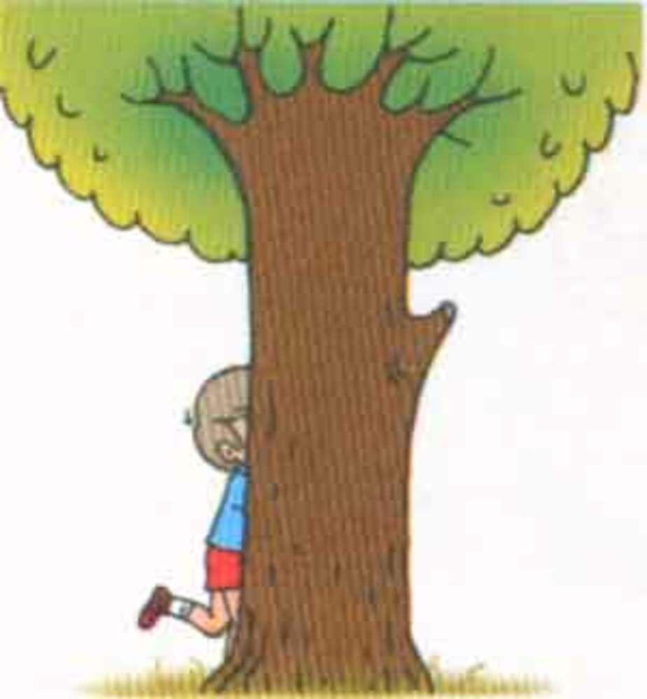 В пос- Космодемьянского полиция искала мальчика- пока он сидел на дереве - Новости Калининграда