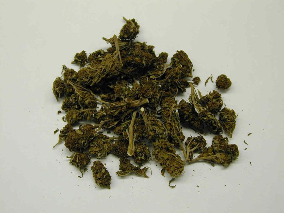 Двоим жителям Черняховска грозит до 20 лет за торговлю марихуаной и амфетамином - Новости Калининграда