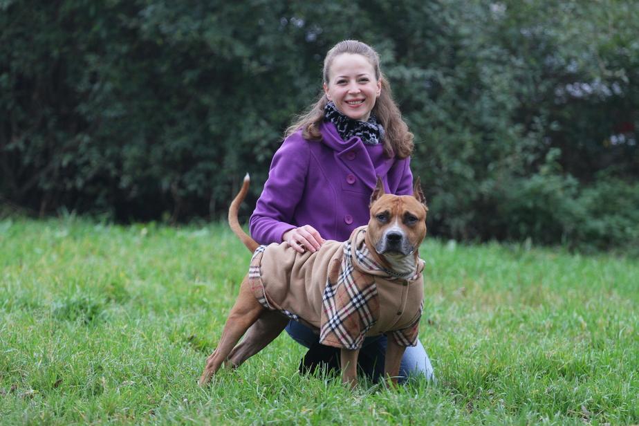 Собакам на зиму покупают целые гардеробы! - Новости Калининграда