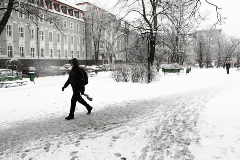 Власти Калининграда обвинили в неубранном снеге арендаторов первых этажей - Новости Калининграда
