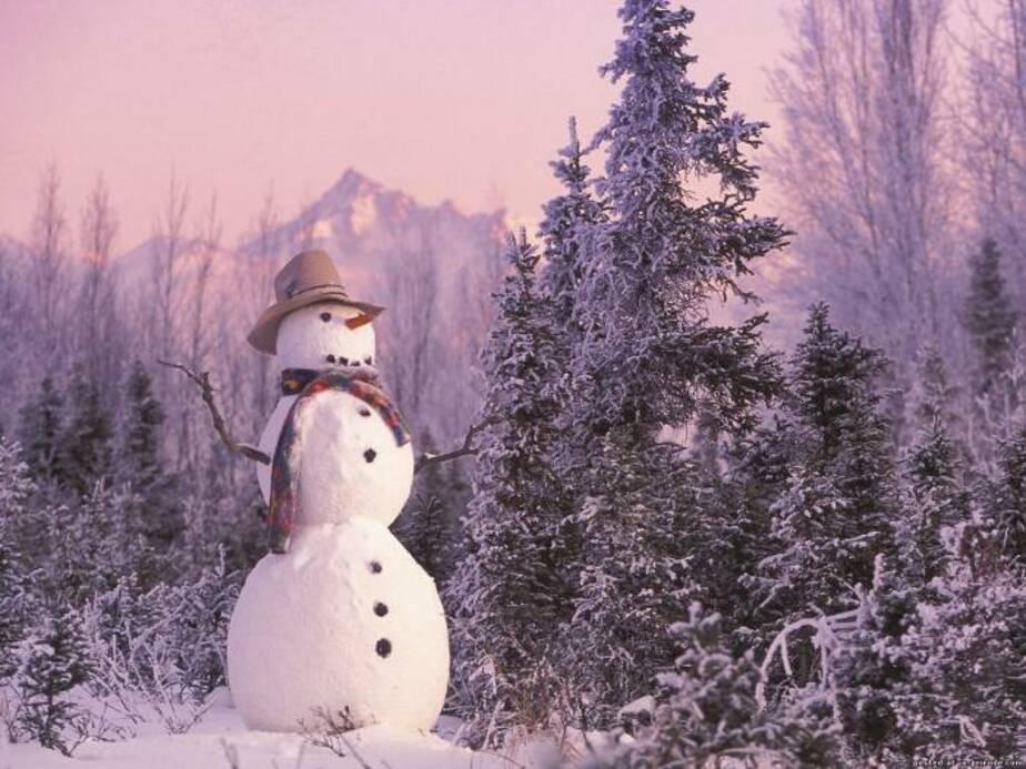 До конца недели в Калининграде ожидается снег и мороз до -12 градусов - Новости Калининграда
