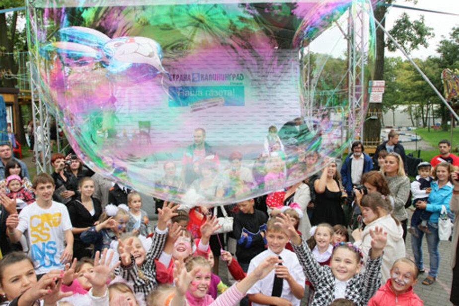 Подарок на праздник - гигантские мыльные пузыри! - Новости Калининграда